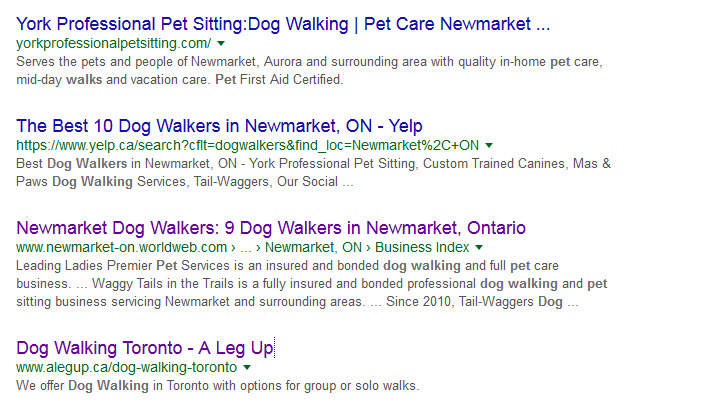 dog-walking-organic-search