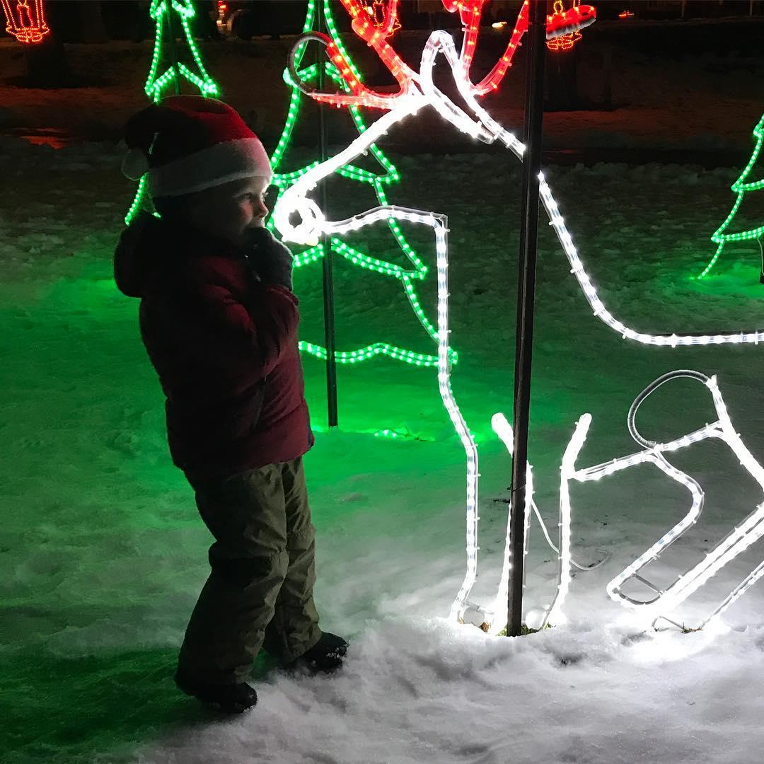 Lakeside Festival Of Lights